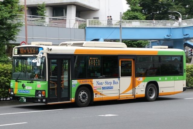 A599.1.jpg