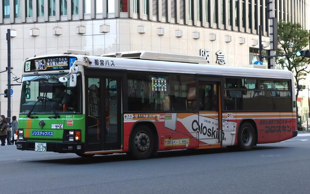 A667.6コロスキン.jpg