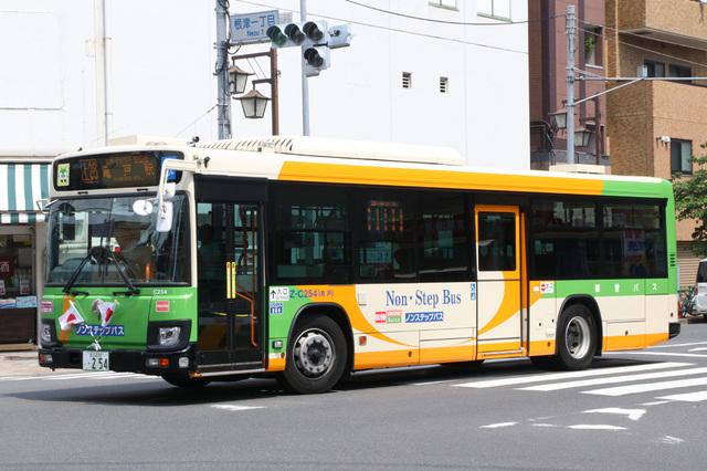 C254.1.jpg