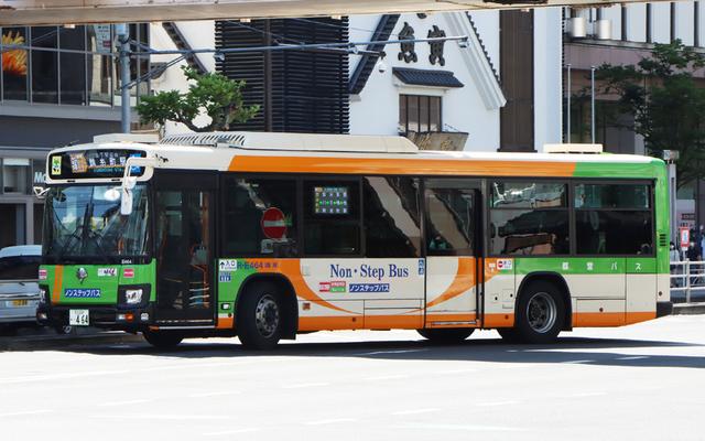 E464.1.jpg