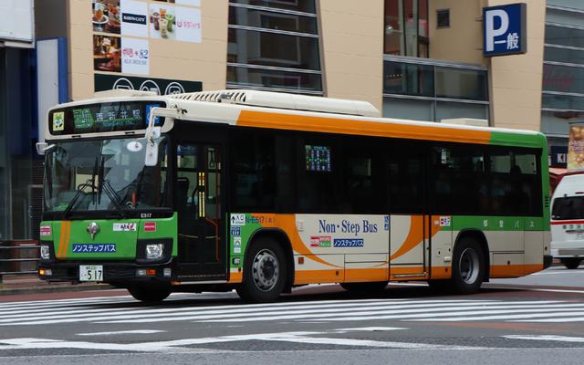 E517.1.jpg