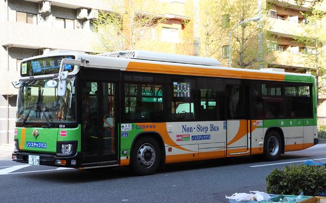 E519.2.jpg