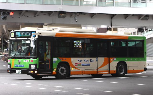 E529.1.jpg