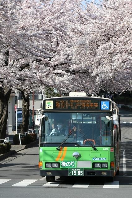 梅70-1柳沢駅.5-1.jpg