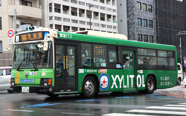 M204.93XYLITOL.jpg