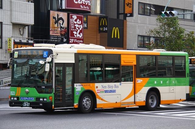 Y492.1.jpg