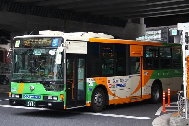 Y495.1.jpg