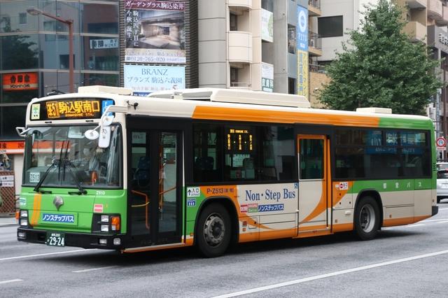 Z513.1.jpg