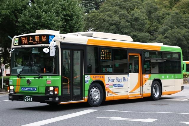 Z517.1.jpg